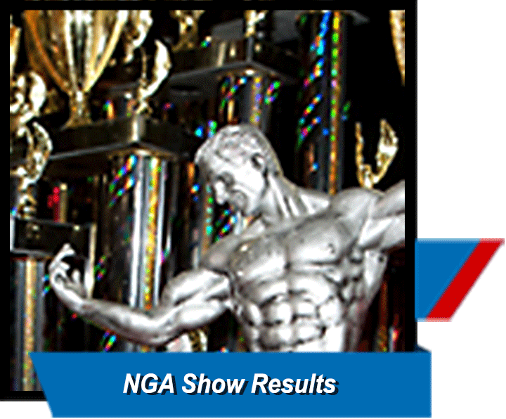 NGA Past Content Winners